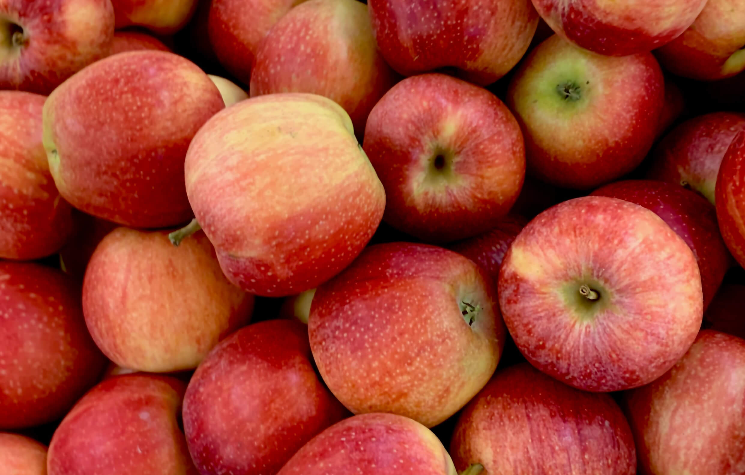 The Rosedene Brand Apple Falls too Far from the Tree